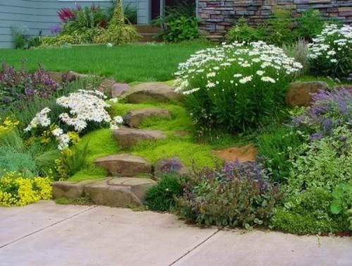 landscaping_2